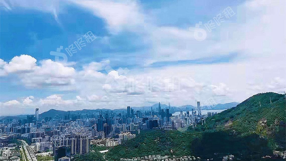 深圳前海起始价56.22亿元挂牌1宗住宅用地-咚咚租